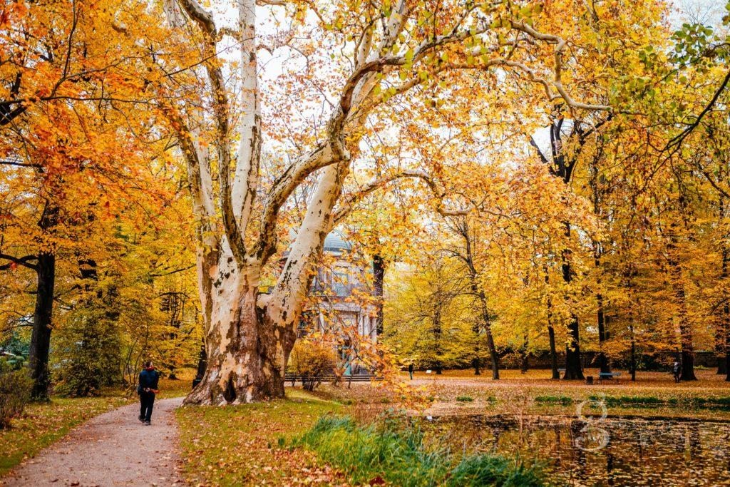 grahlfoto.de Familienshooting Schlosspark Pillnitz Schloss Pillnitz an der Elbe