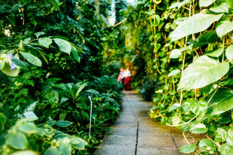 Familienshooting im Botanischen Garten Dresden grahlfoto mit Cordula Maria Grahl